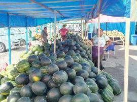 Pepeni din Oltenia în Piaţa Ioşia din Oradea (FOTO)