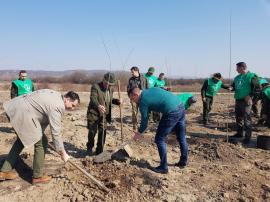 Mini-pădure în Oradea: 3.500 de puieți de diferite specii, plantați în Cartierul Tineretului (FOTO)