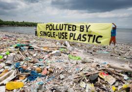 Fără plastic! Tacâmurile, farfuriile, paiele sau bețișoarele de urechi, interzise în statele din Uniunea Europeană