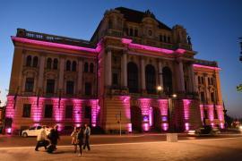 Retrospectiva săptămânii prin ochii lui Bihorel: Bolovan a iluminat Primăria în roz cu gândul la şefii CJ