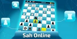 Maestrul FIDE Dan Raţ a organizat şi primul turneu de şah online pentru copii din Oradea