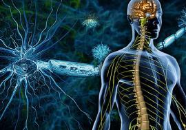 Scleroza multiplă: Simptome şi terapii