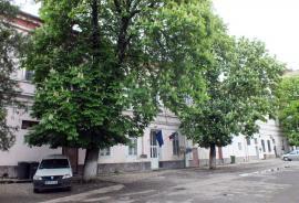 Modificări în reţeaua şcolară din Oradea: 9 clase de la Şcoala Bălcescu se mută pe strada Cuza Vodă, se fac comasări de grădiniţe