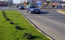 RER Ecologic Service şi Adenandra vor întreţine spaţiile verzi din Oradea în următorii trei ani