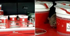 Scandalul de la Kaufland: Reprezentanţii magazinului susţin că şoarecele a fost pus intenţionat! (VIDEO)