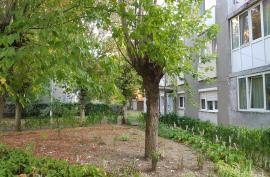 Prefectura atacă Regulamentul de spaţii verzi din Oradea: Obligaţia întreţinerii spaţiilor poate fi impusă doar prin referendum!