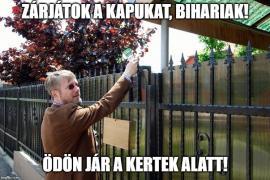 Szabó Ödön manelistul