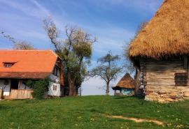 """Descoperă valorile tradiţionale româneşti: Copii din centre de plasament, în tabără în complexul """"Traditional Casa"""" din Roşia (FOTO)"""