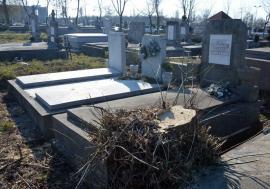 Arborii periculoşi din Cimitirul Rulikowski vor fi toaletaţi. Cererile pot fi depuse la sediul ADP Oradea