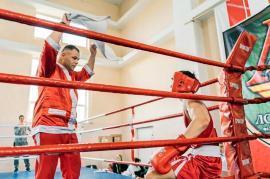 150 de sportivi din patru țări vor ajunge în Salonta, la Memorialul Nicolae Talpoș, un turneu internațional de box