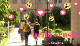 Flirt de modă nouă: Studenţii Universităţii din Oradea au pagină de matrimoniale pe Facebook