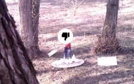 Monumentul dedicat Annei Marossy, vandalizat de nişte copii (VIDEO)
