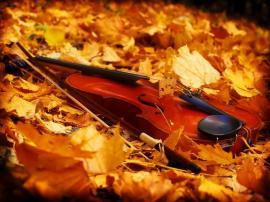 Două săptămâni de muzică clasică la Filarmonică: Simfoniile Toamnei aduc vedete la Oradea