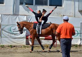 Acrobații pe cai, în Cetate: Cupa României la voltija se va organiza în premieră la Oradea