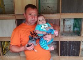 Campionatul porumbeilor voiajori: Zgârd&Sztanyik câştigă etapa de viteză - demifond Sokolina