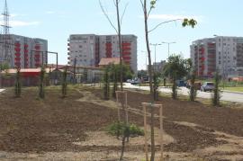 5 spaţii verzi noi, în pregătire în Oradea. În ce stadiu sunt lucrările(FOTO)