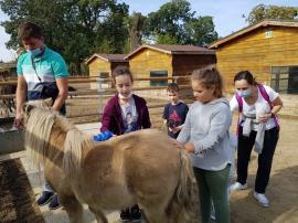 Un eveniment devenit tradiţie: Ziua părinţilor adoptivi la Zoo Oradea (FOTO)