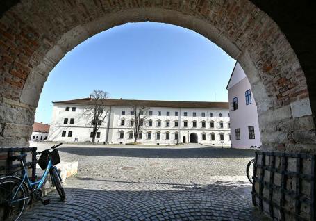 Abuz după abuz: Directoarea Muzeului orașului Oradea îi dă afară pe subordonații care au reclamat-o
