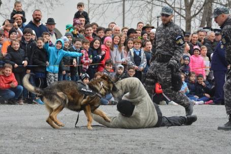 Poliţiştii, sub asalt: Ziua Poliţiei a adus sute de copii în Cetatea Oradea (FOTO / VIDEO)